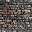 Old red brick wall — Stock Photo #29436961