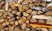 Bir yığın kuru odun — Stok fotoğraf