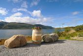 Flowerbed - barrel on the banks of the fjord — Stock Photo