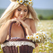 Attractive blonde in chamomile field. Young woman in wreath — Stock Photo #37562263