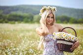 Attraente bionda in campo di camomilla. giovane donna in corona — Foto Stock
