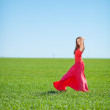 Portrait of a beautiful young woman in a red dress on a background of sky and grass in summer — Stock Photo #37663313