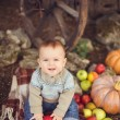 Young cute little boy sitting outdoors in autumn. Pumpkins laying around — Stock Photo #37996781
