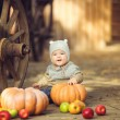 Young cute little boy sitting outdoors in autumn. Pumpkins laying around — Stock Photo