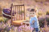Little fashionable boy having fun in lavender summer field. — Foto de Stock