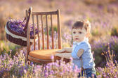 Little fashionable boy having fun in lavender summer field. — Stock Photo