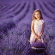 Smiling girl sniffing flowers in a lavender field — Stock Photo