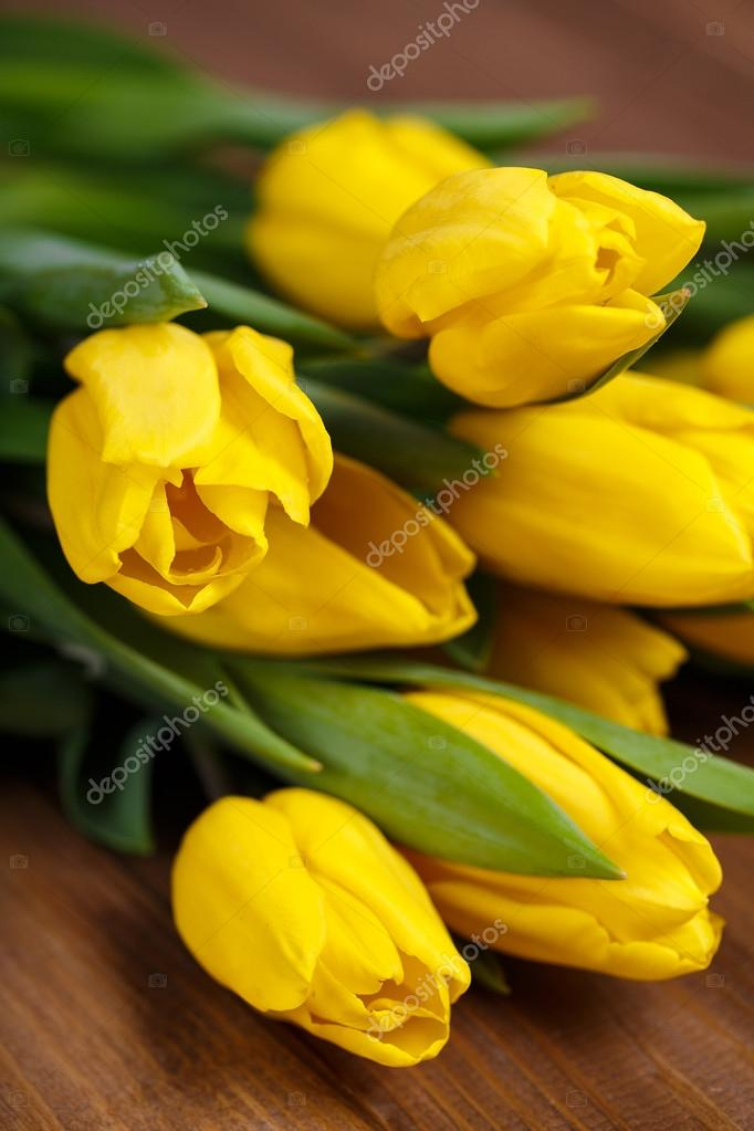 躺在木板上的黄色郁金香