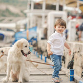 Happy baby boy with him dog on berth in summer — Stock Photo