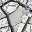 Stock Photo: Gray cracked mud