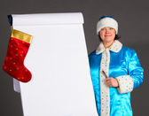 Business Snow Maiden — Stock Photo