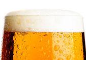 Piwo lager — Zdjęcie stockowe