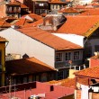 City roofs at Porto — Stock Photo #21441405