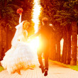 Stock Photo: Wedding sunset