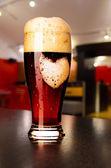 Loving beer — Stock Photo