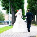 Bride and groom — Stock Photo #8661824