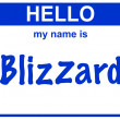 Stock Photo: Name blizzard