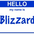 Name blizzard — Stock Photo