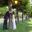 Portrait of newlyweds kissing near a tree — Stock Photo