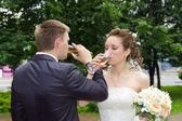 Newlyweds drinking champagne — Stock Photo