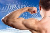 Biceps — Stock Photo