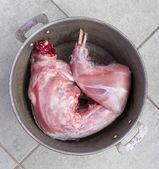 Carne de conejo crudo — Foto de Stock