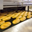 Production of bread in factory — Stock Photo