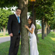 Portrait of the newlyweds near the tree — Stock Photo