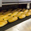 Production of bread in factory — Photo