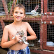 Boy with little rabbit — Stock Photo