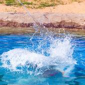 Büyük sıçrama — Stok fotoğraf