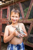 Boy with bunny — Stock Photo