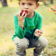 The boy in the woods — Stock Photo
