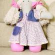 Handmade doll — Stock Photo #29036711