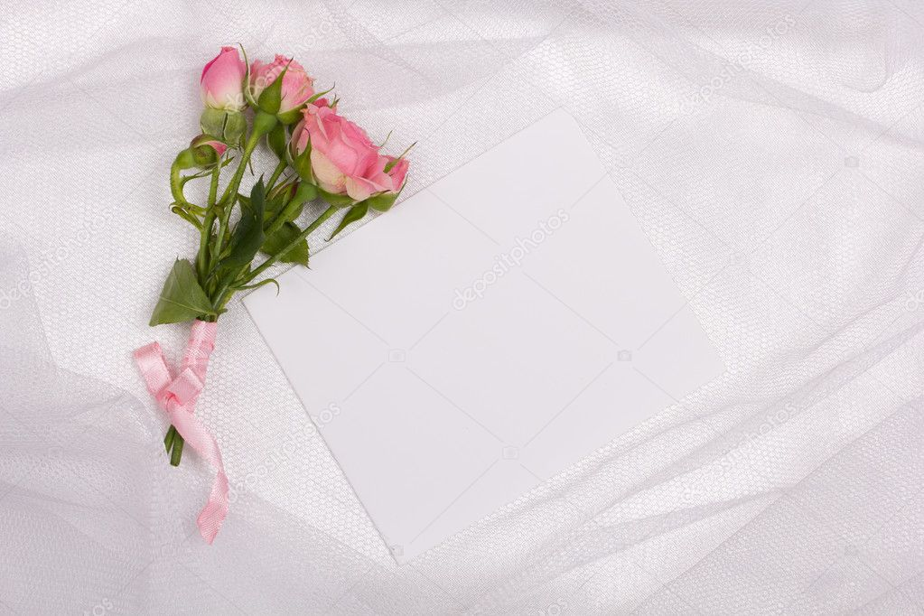 Beautiful rose and card for your text on a background white veil  Stock Photo #14046775