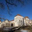 Svirz Castle — Stock Photo