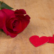 Stock Photo: Red rose and heart symbol