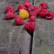 Ripe tasty raspberries — Stock Photo #27216649