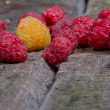 Ripe tasty raspberries — Stock Photo #27216767