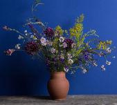 Bouquet of wild flowers — Stock fotografie