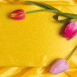 Beautiful spring flowers — Stock Photo #42547565