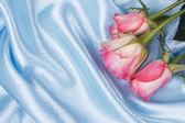 свежие розовые розы — Стоковое фото