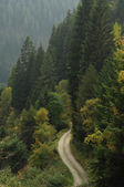 Lane in de bergen — Stockfoto