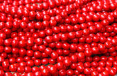 Color beads — Stock Photo