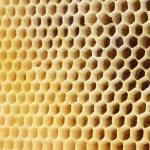 Beer honey in honeycombs. — Stock Photo #15654221