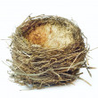 Stock Photo: Bird nest
