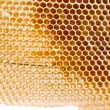 Royalty-Free Stock Photo: Beer honey in honeycombs.
