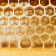 Beer honey in honeycombs. — Stock Photo #22268887