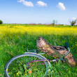Stock Photo: Bicycle partially hidden by tall grass
