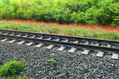 Rails of the railway — Stock Photo